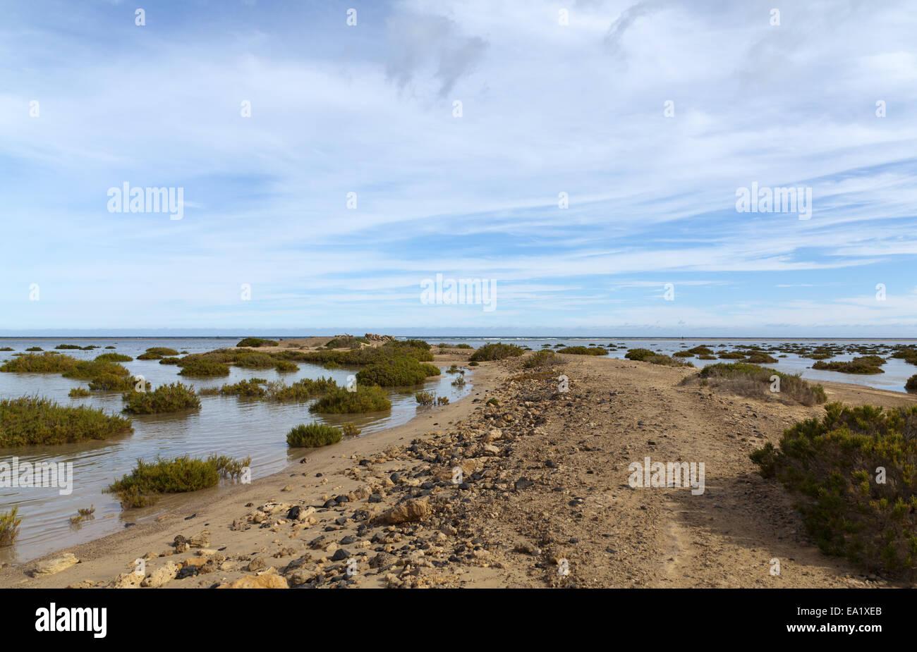 The salt marsh at Playa Barca - Stock Image