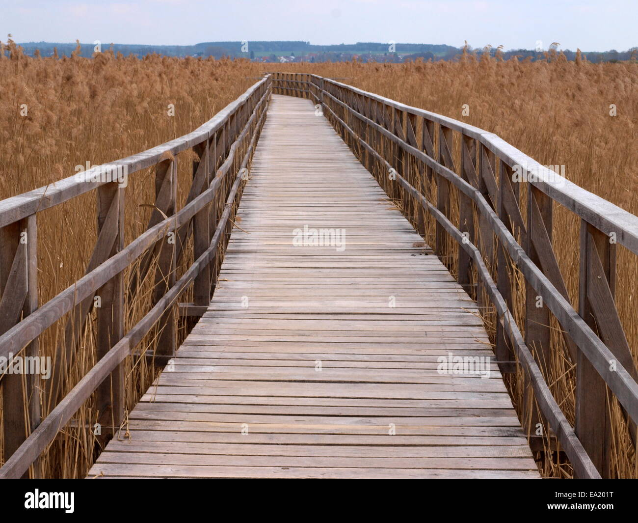 Wooden path at the Federsee Stock Photo