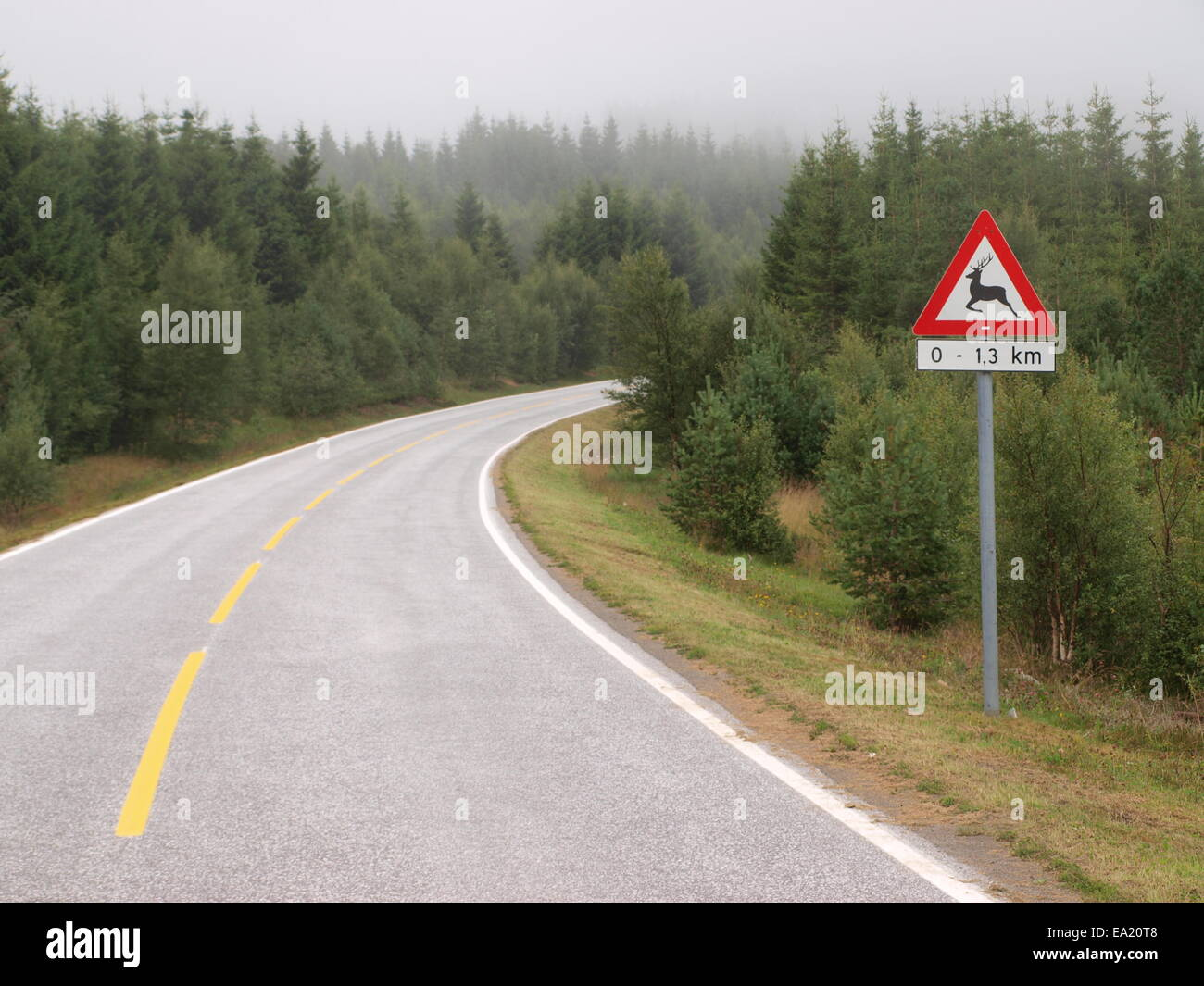 Animal crossing traffic sign in lappland - Stock Image