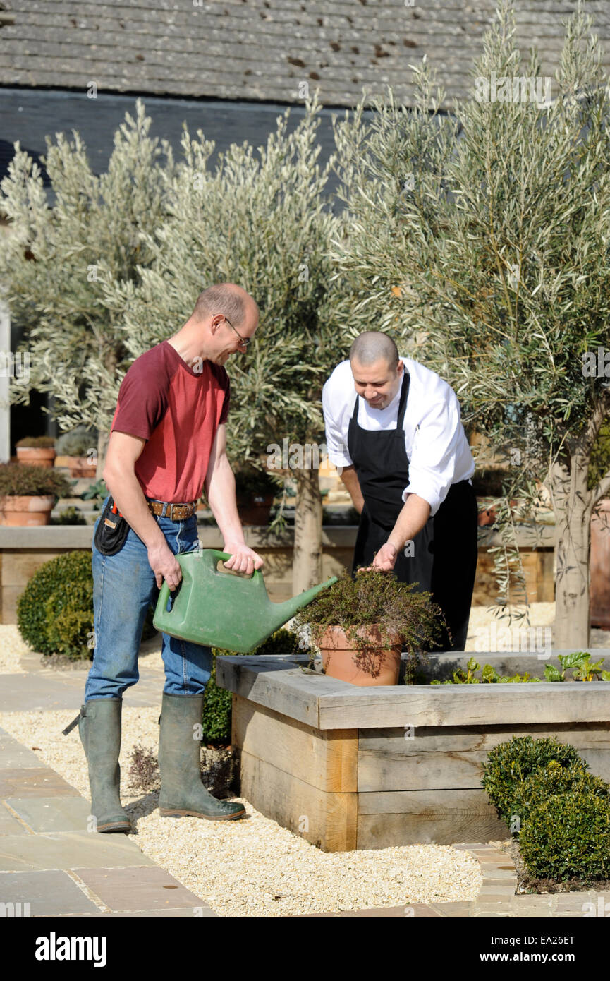A Gardener Watering Raised Beds Of Herbs With The Chef Of A