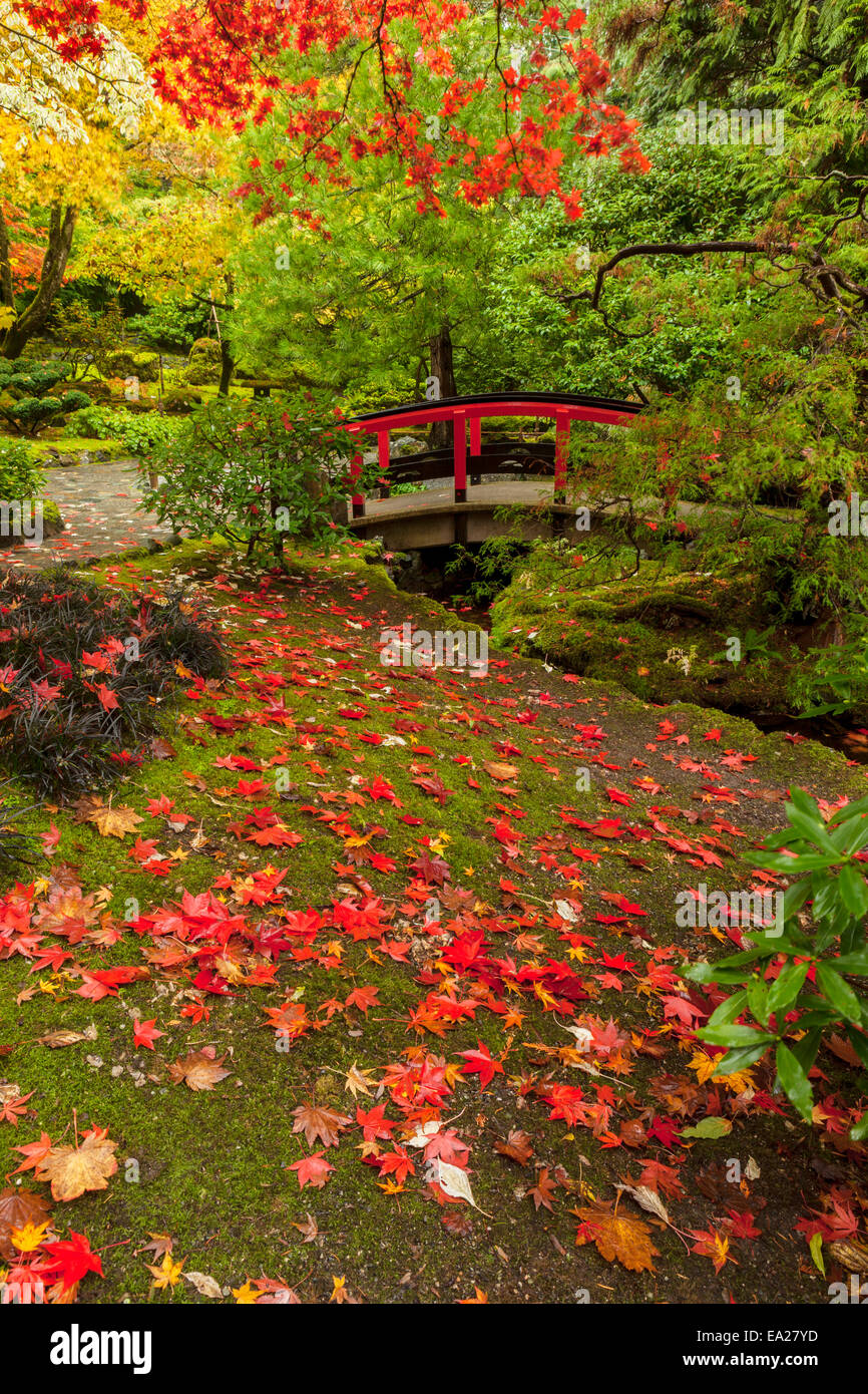 Autumn colors in Butchart Gardens-Victoria, British Columbia, Canada ...