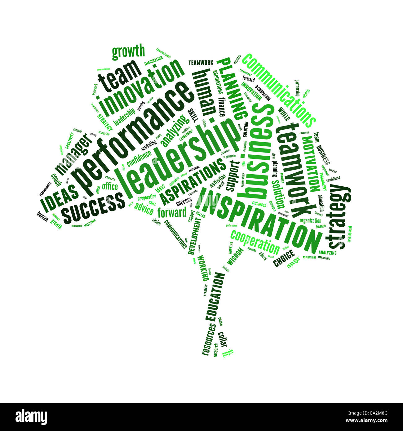 Conceptual text word cloud or tagcloud isolated on white background, metaphor for business, team, teamwork, management - Stock Image