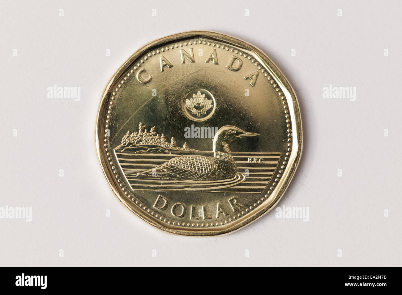A loonie, as a Canadian one dollar coin is commonly called. - Stock Image