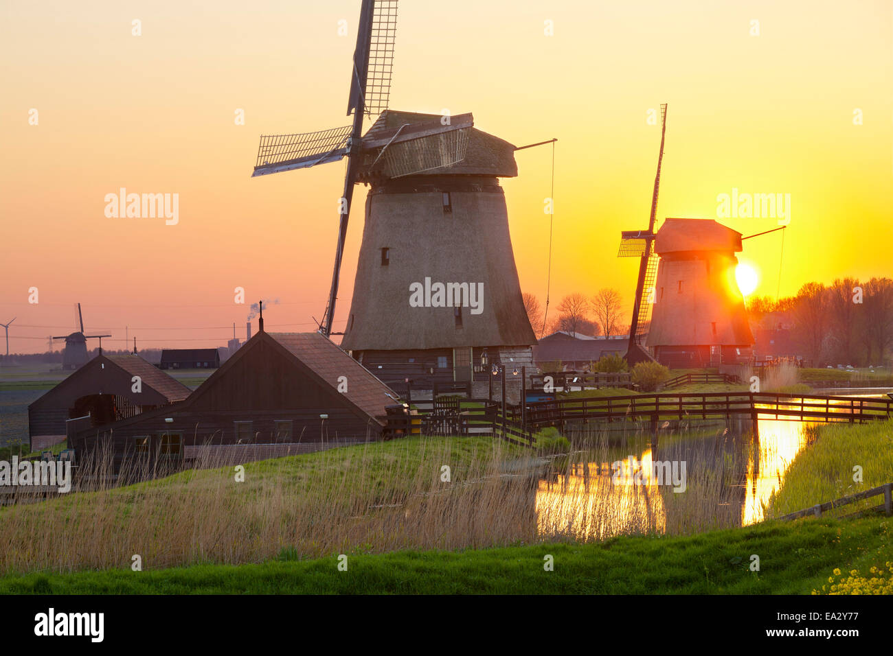 Windmills at sunset, Schermerhorn, North Holland, Netherlands, Europe - Stock Image