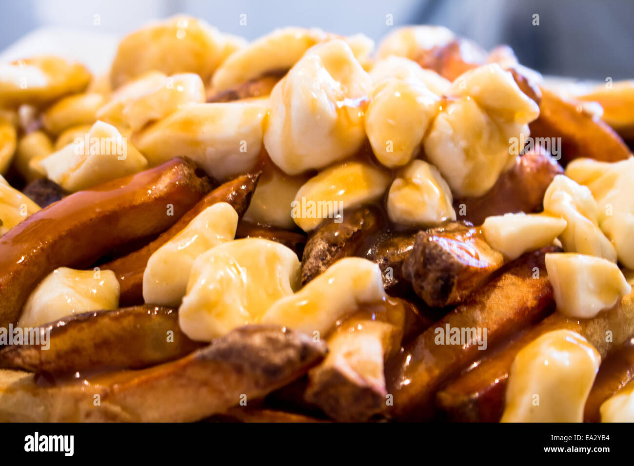 Homemade Poutine - Stock Image
