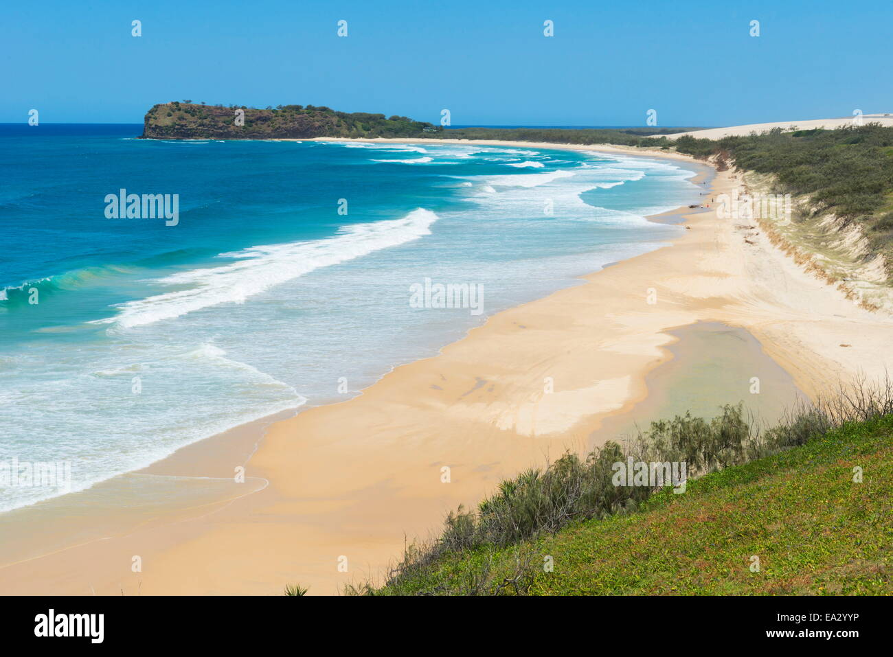 Great Sandy National Park, Fraser Island, UNESCO World Heritage Site, Queensland, Australia, Pacific - Stock Image