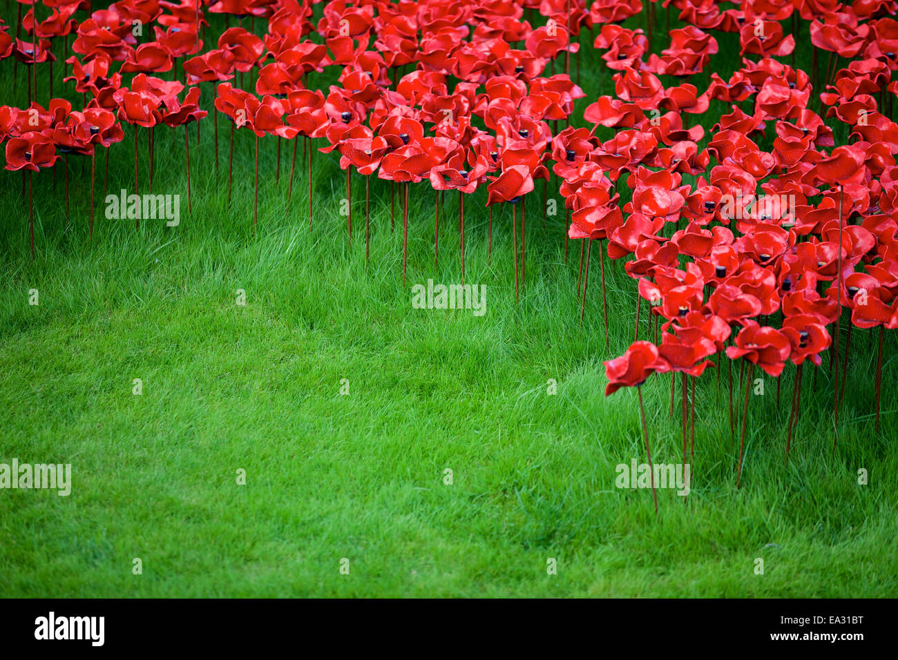 Blood Swept Lands and Seas of Red installation at The Tower of London, London, England, UK - Stock Image