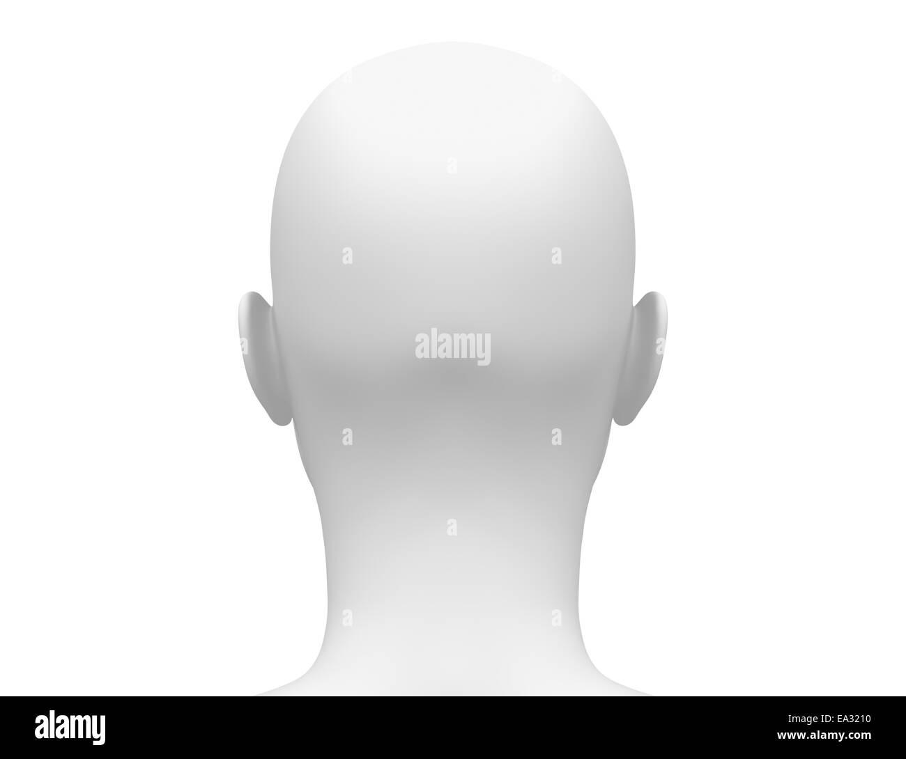 Female Head Blank Anatomy - Back view Stock Photo: 75055484 - Alamy