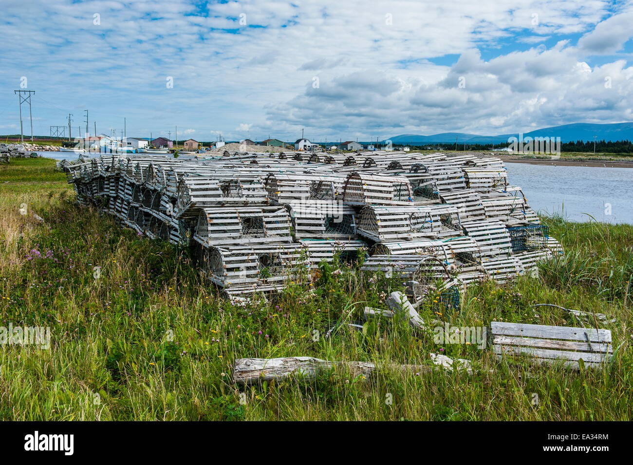 Lobster fishing traps in Port au Choix, Newfoundland, Canada, North America - Stock Image