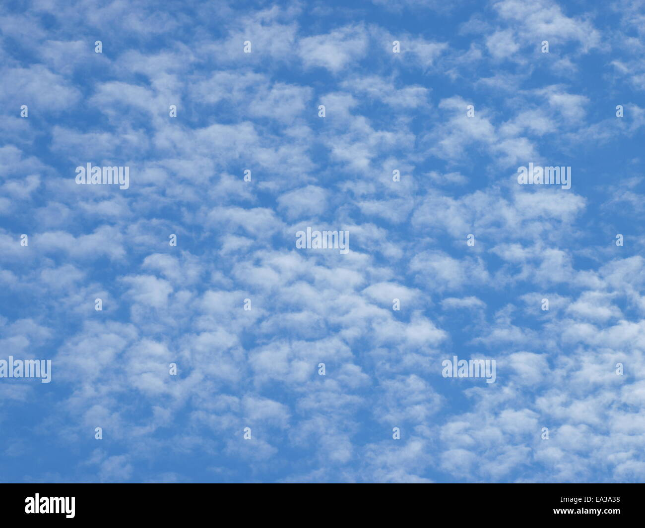 Fluffy clouds, Cirrocumulus Stock Photo