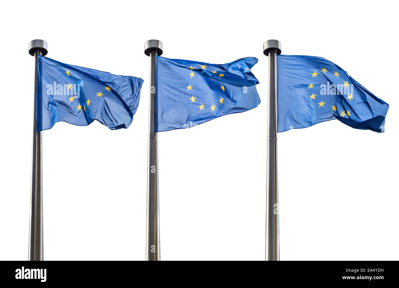 European Union flags isolated on white - Stock Image
