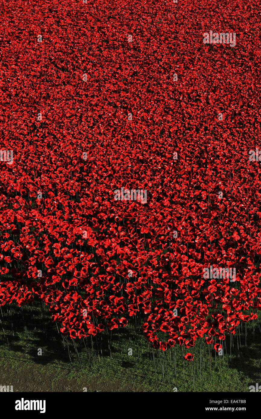 Ceramic poppy installation Blood Swept Lands and Seas Of Red at The Tower of London Stock Photo