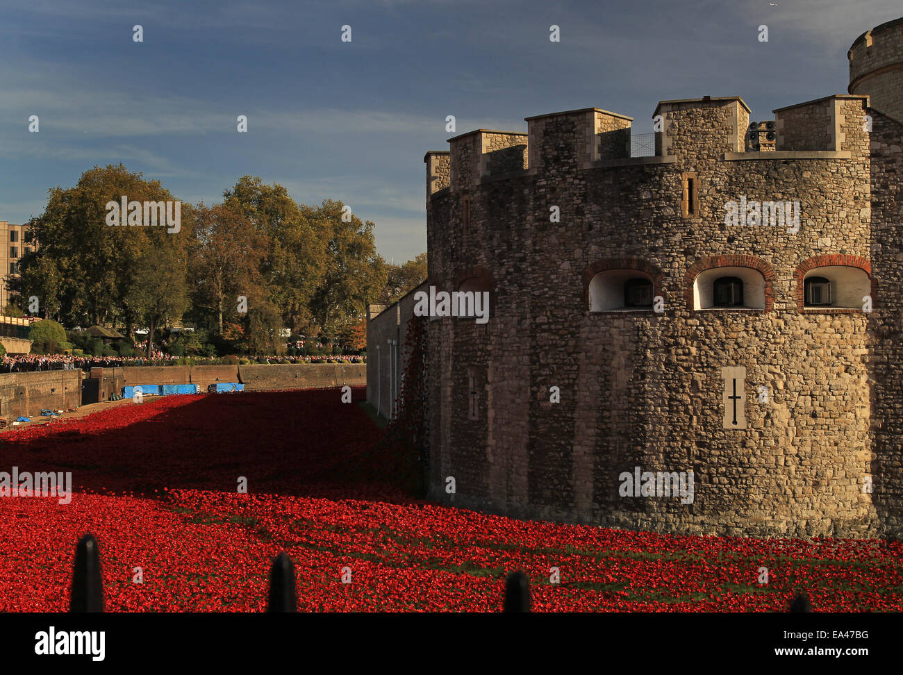 Ceramic poppy installation Blood Swept Lands and Seas Of Red at The Tower of London - Stock Image