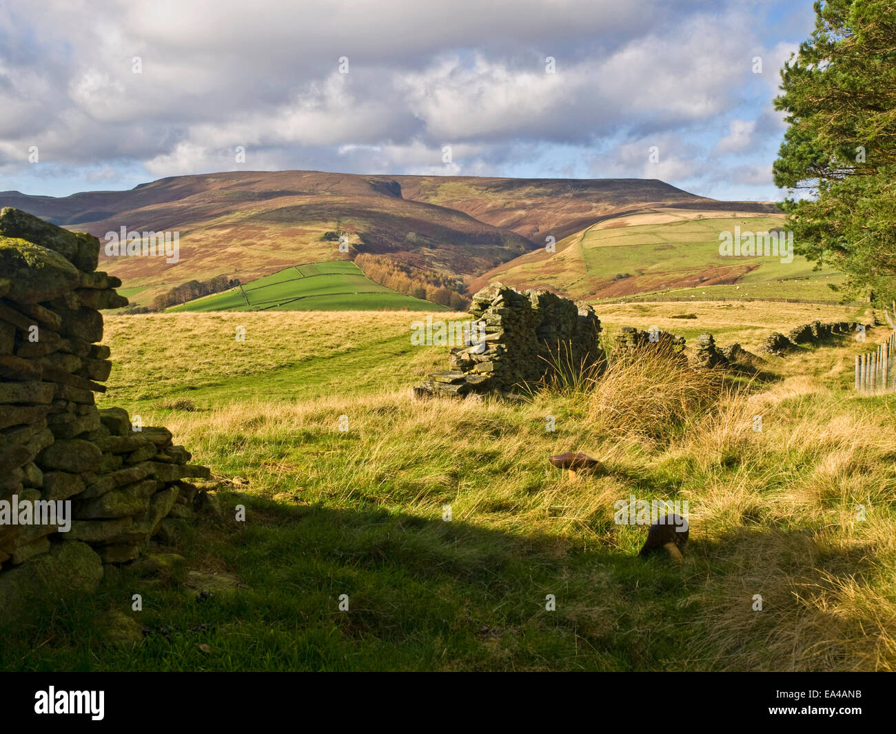 Kinder Scout from Hope Cross  in the Peak District National Park , UKStock Photo