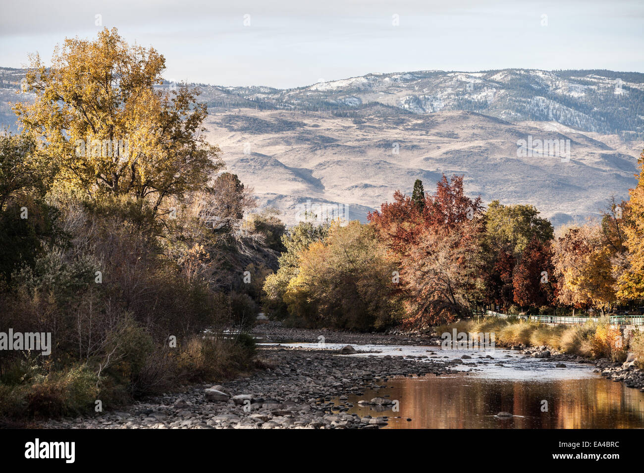 A view of the Truckee River running through the city of Reno, NV. - Stock Image