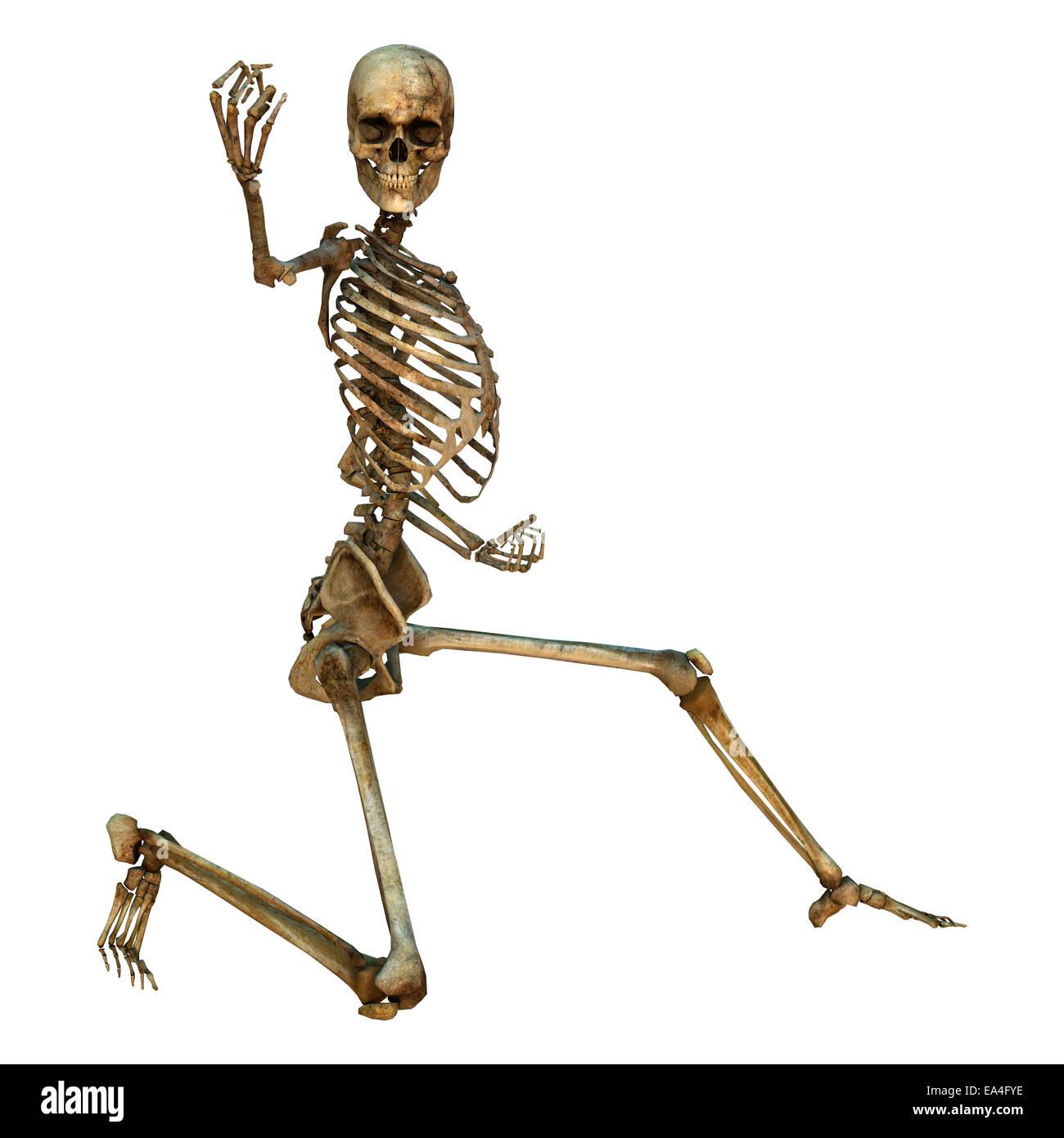 3d Digital Render Of A Human Skeleton In A Oi Zukii Gari Martial