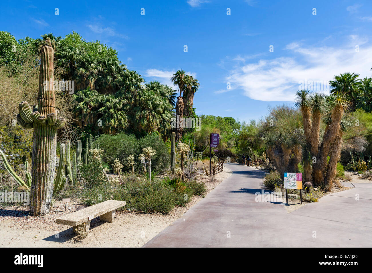 Living Desert Zoo and Gardens, Palm Desert, Riverside County, Southern California, USA - Stock Image