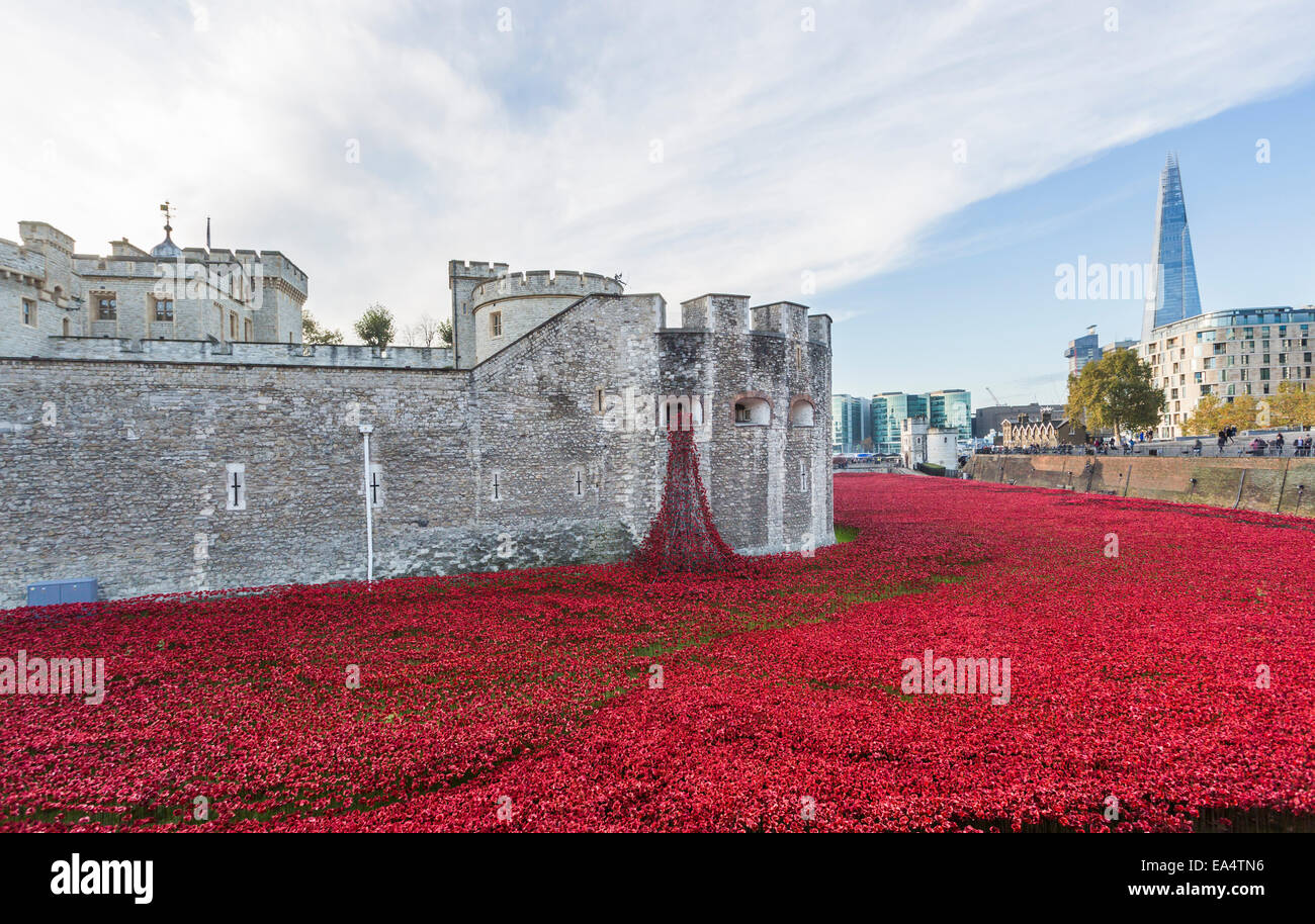 Red ceramic poppies cascading from the Weeping Window at The Tower Of London Remembers, Blood Swept Lands and Seas - Stock Image