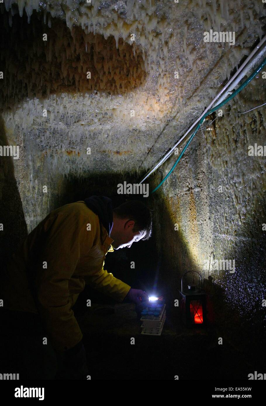 Sulzbrunn, Germany. 03rd Nov, 2014. Doctorand Clemens Karwautz examines the mucous dripstones at the ceiling of - Stock Image