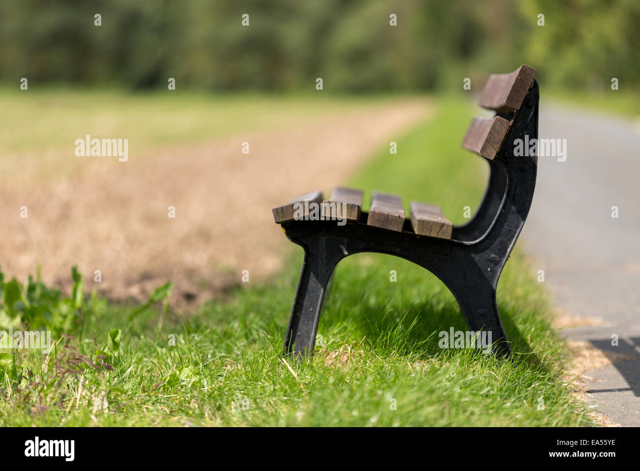 Lonely bench in nature - Stock Image