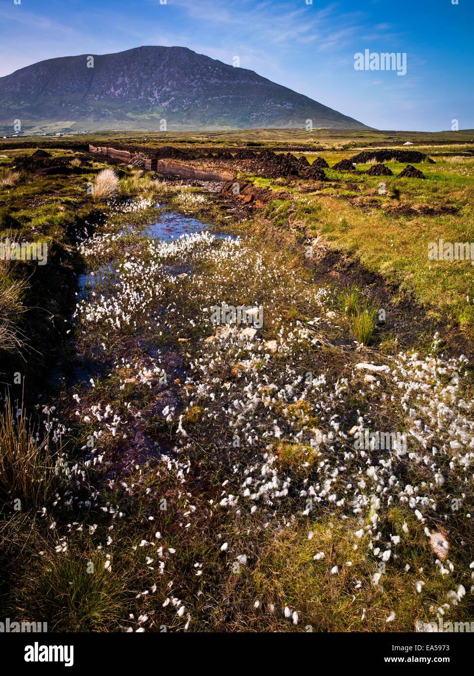 Turf Cutting, Achill, Mayo - Stock Image