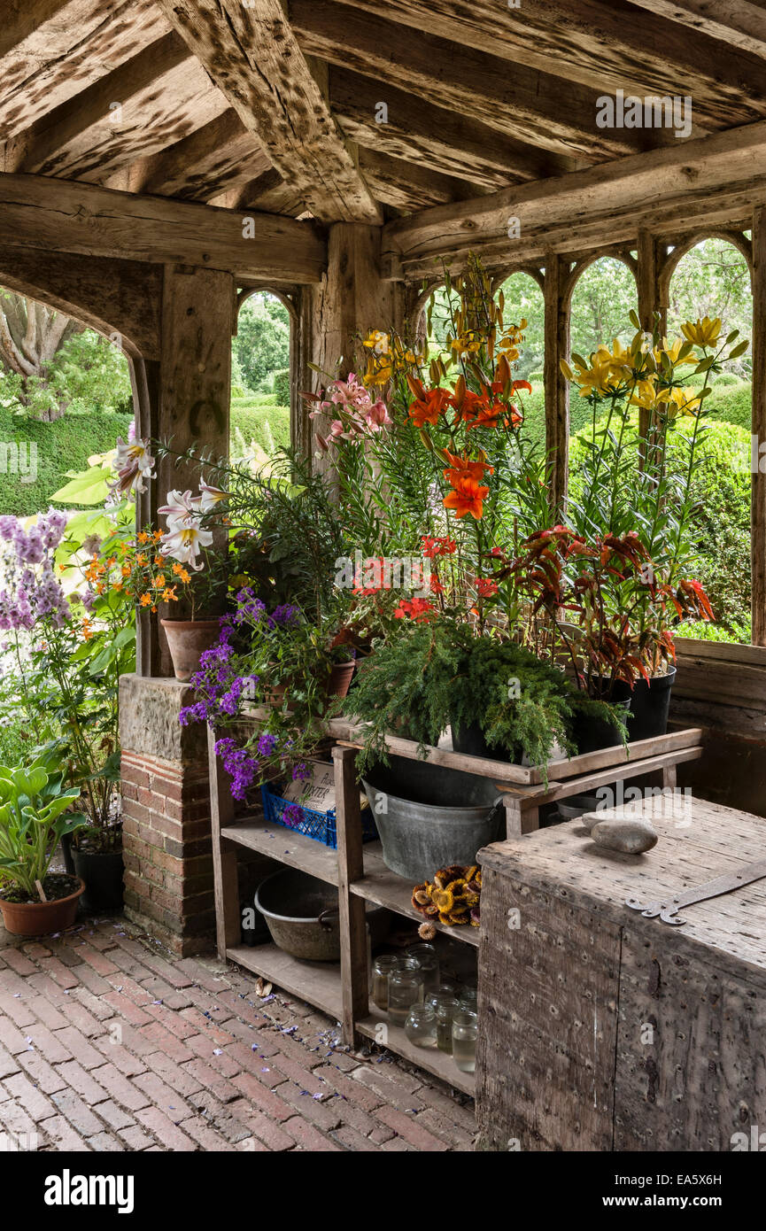 Great Dixter, East Sussex - the garden created and made famous by Christopher Lloyd. A late summer arrangement in - Stock Image
