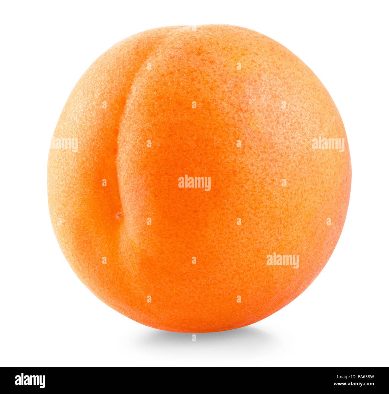 Apricot fruit - Stock Image