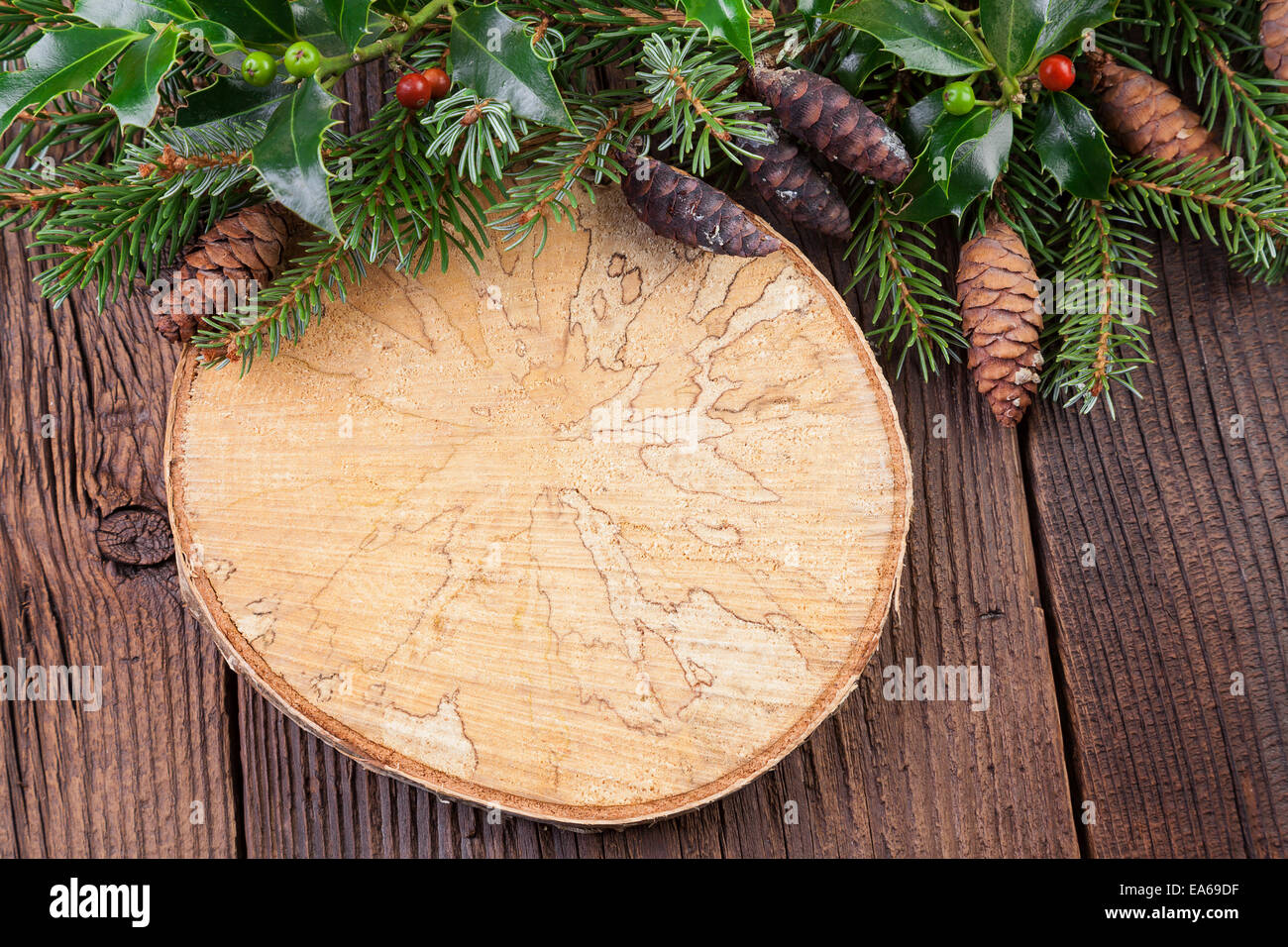 Tree Ring Stock Photos & Tree Ring Stock Images - Alamy