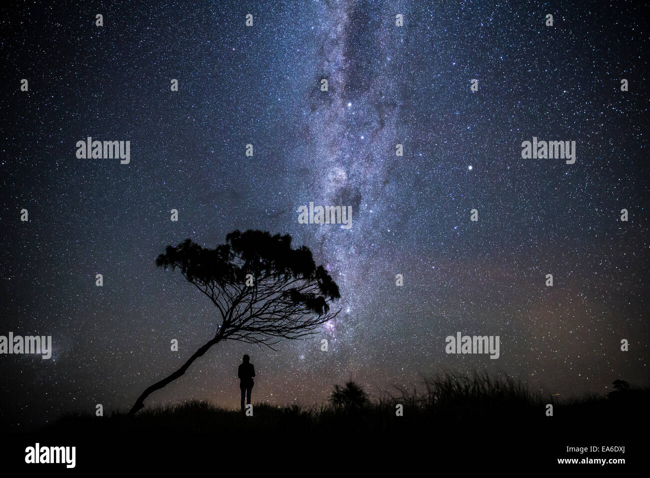 Australia, Yamba, Man standing under stars at night Stock Photo