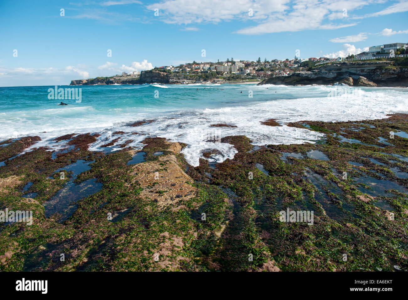 Australia, New South Wales, Sydney, Tamarama beach - Stock Image