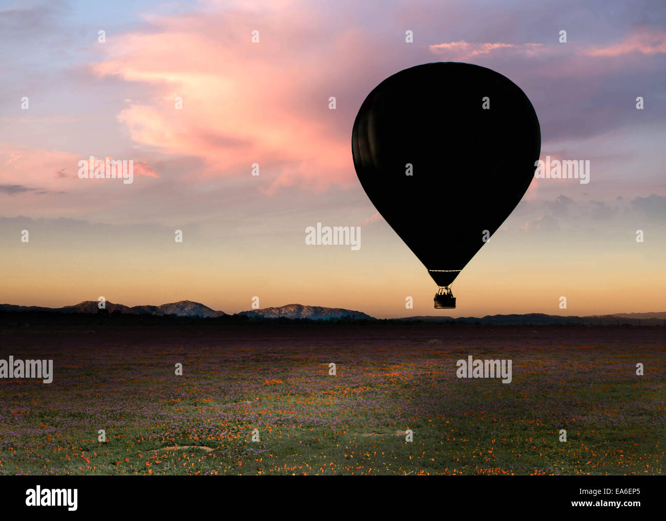 Hot air balloon on early morning - Stock Image