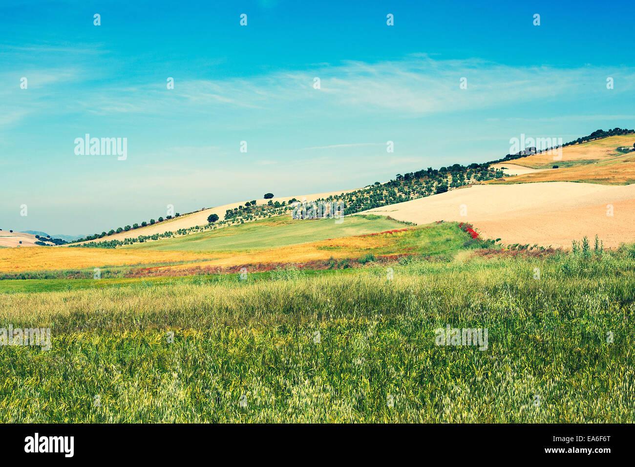 Rural landscape, Campo, Spain - Stock Image