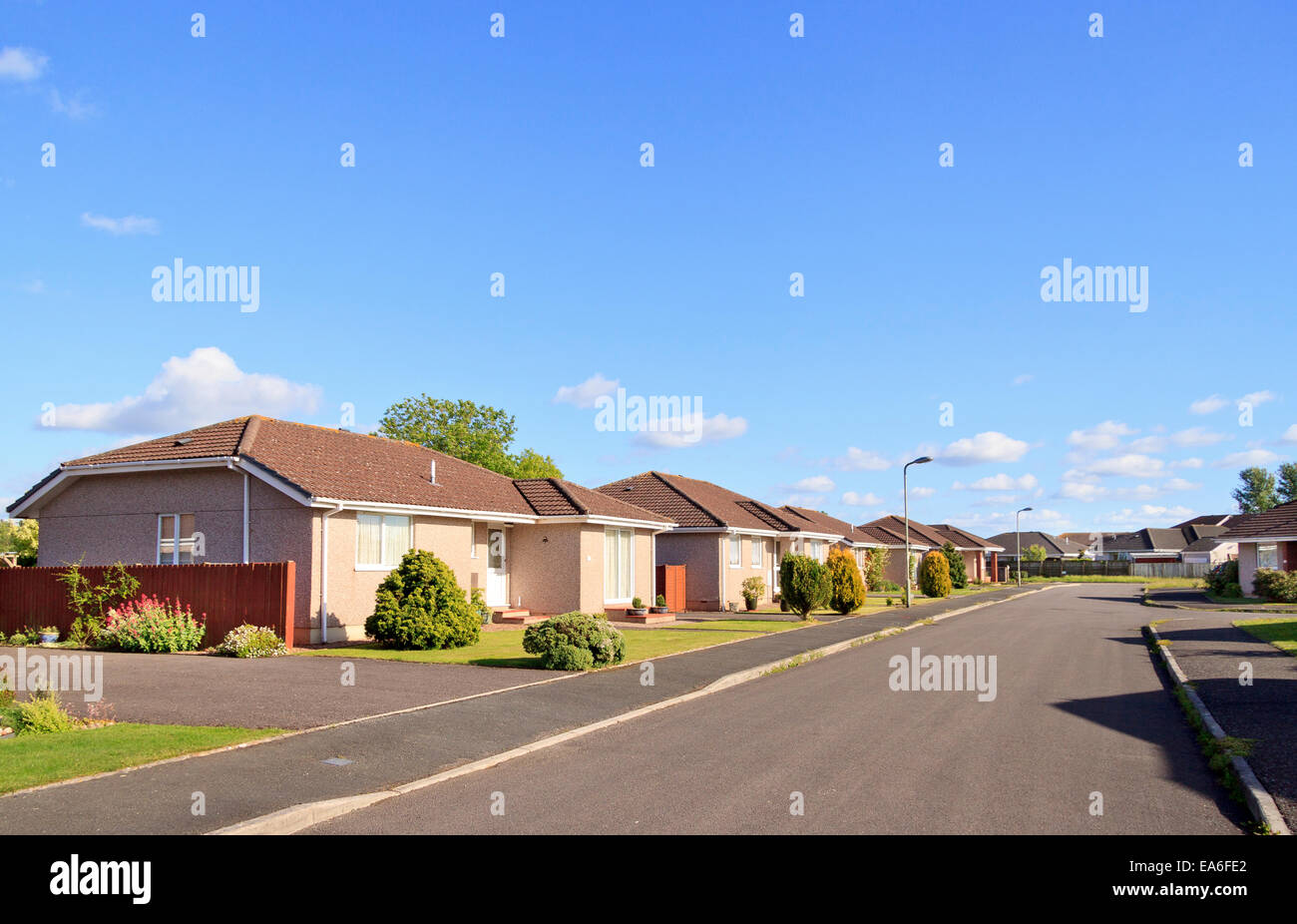 Pristine bungalows on a residential street in Dunkeswell, Devon, England - Stock Image