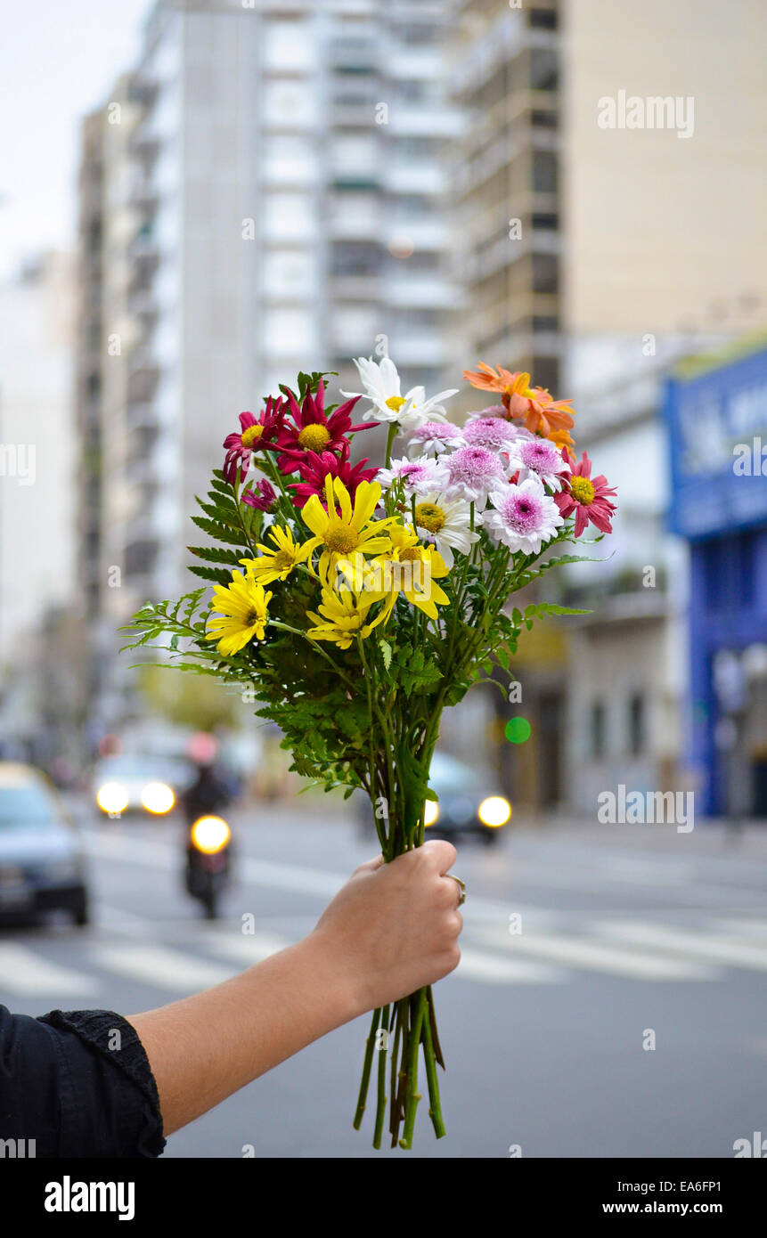 Argentina, Buenos Aires, Woman holding bunch of flowers - Stock Image