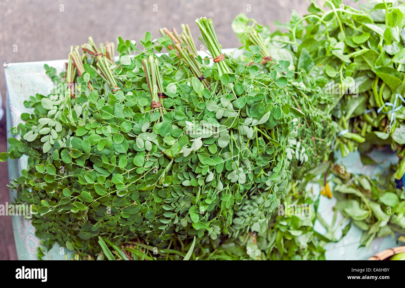 Bunches of Malunggay leaves, Moringa Oleifera for sale at a market in the Philippines. Stock Photo