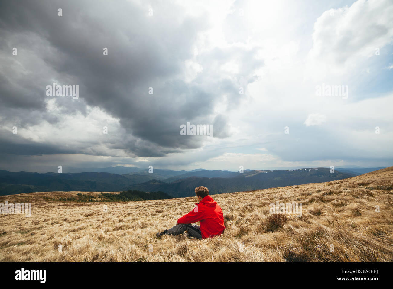 Young man sitting in field - Stock Image