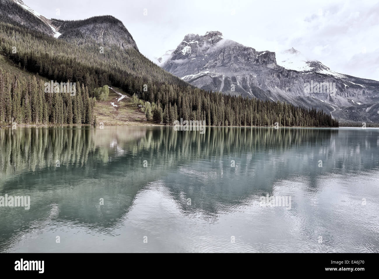 Canada, View of Emerald Lake Yoho National Park - Stock Image
