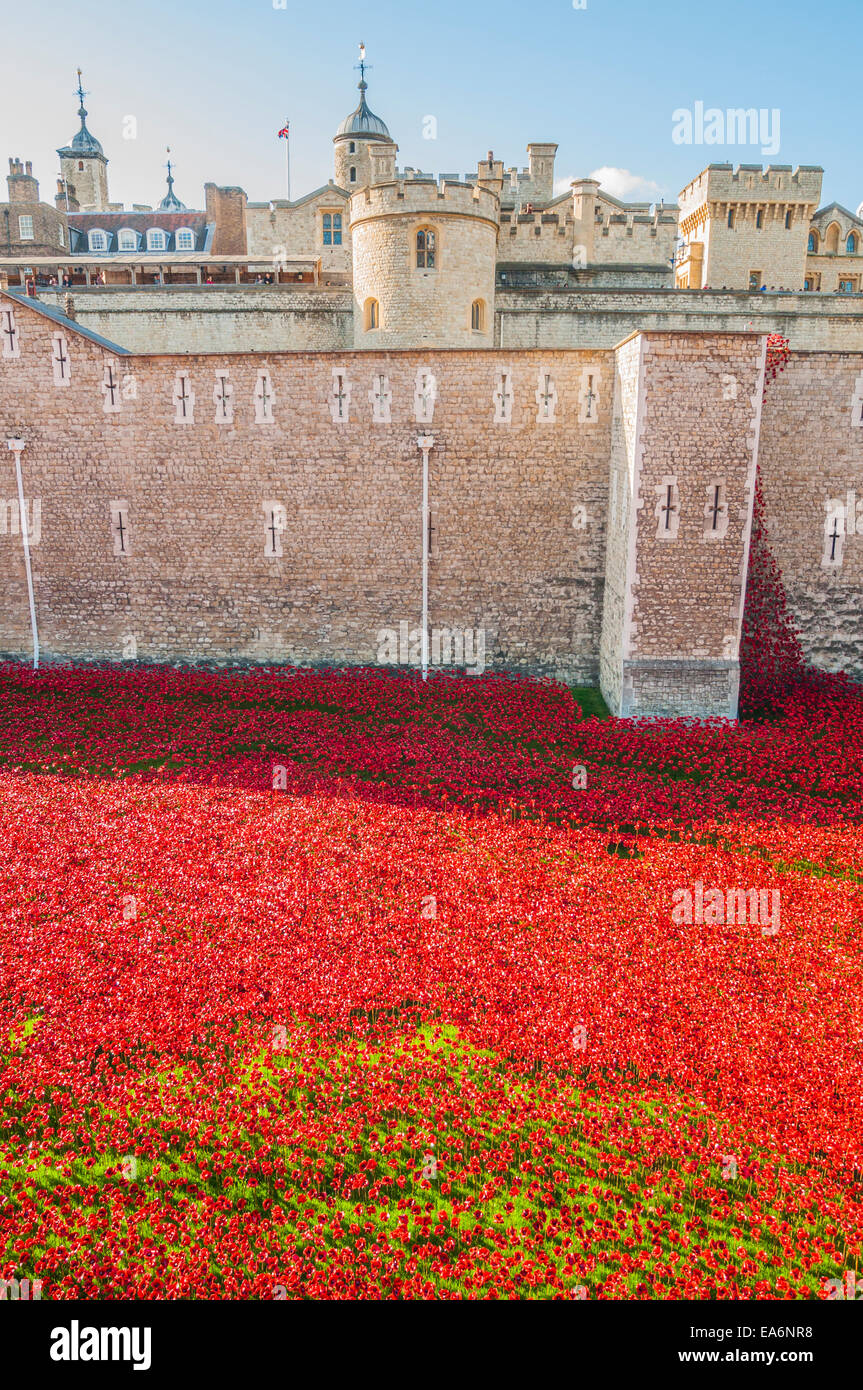 Blood swept lands and seas of red is an art installation by Paul Cummins commemorating the centenary of the outbreak Stock Photo