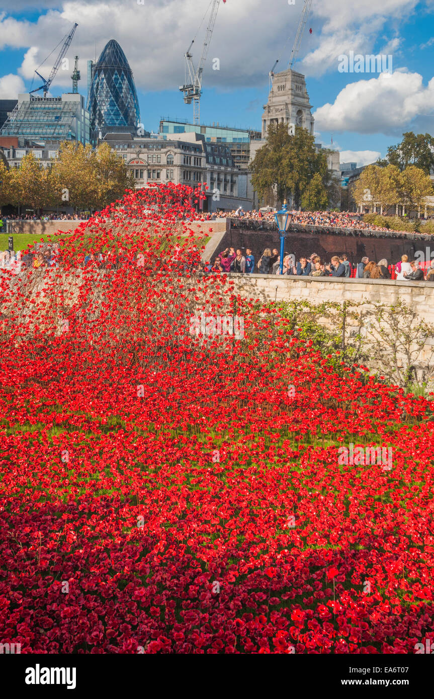 Blood swept lands and seas of red is an art installation by Paul Cummins commemorating the centenary of the outbreak - Stock Image