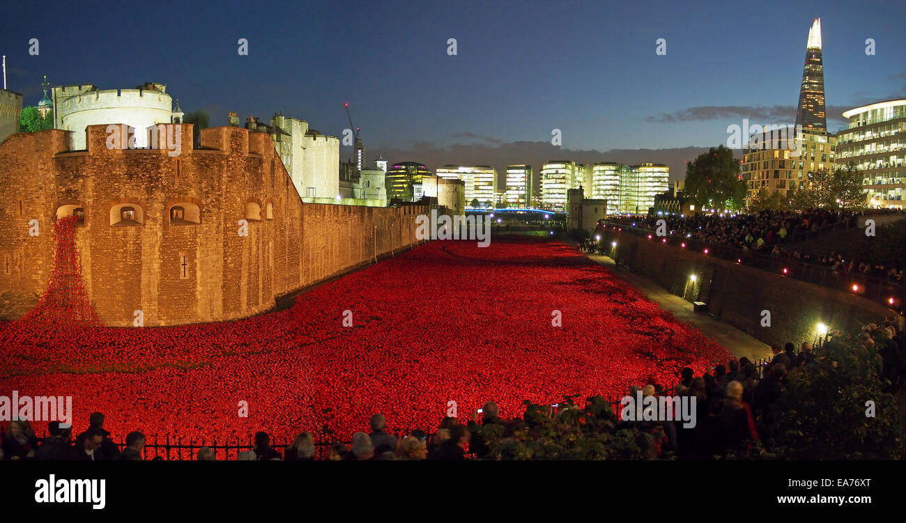 View of the Tower of London moat full of poppies at dusk in November 2014 - Stock Image