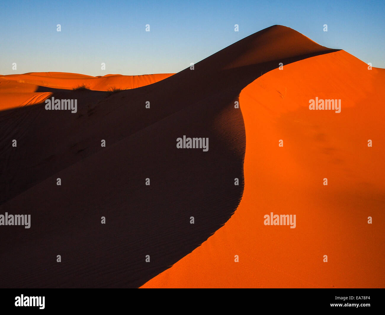 Sand dunes of Erg Chebbi in the Sahara Desert, Morocco. - Stock Image