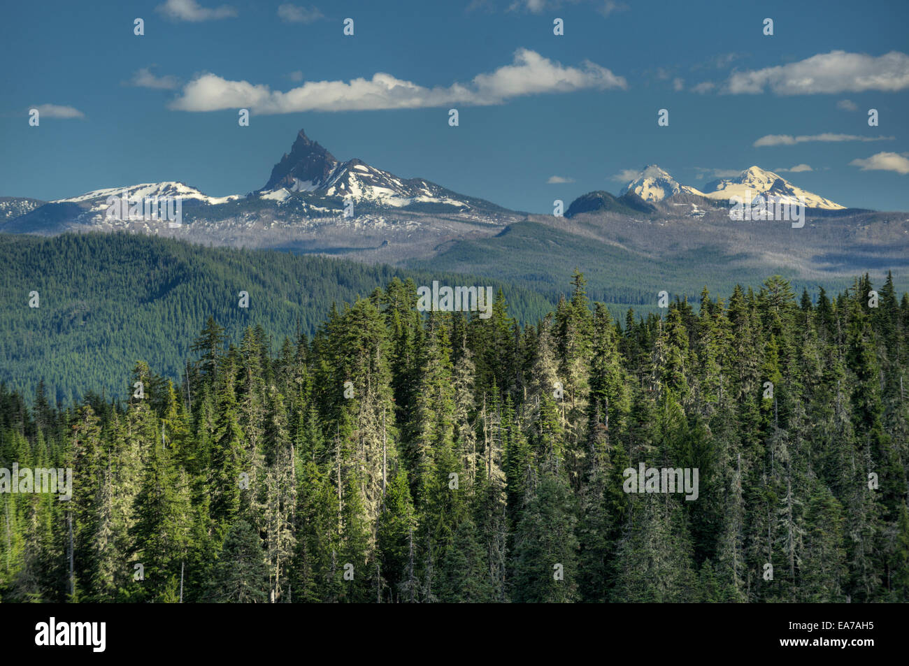 Three-Fingered Jack and two of the Three Sisters as seen from Outerson Mountain in the Willamette National Forest, Stock Photo