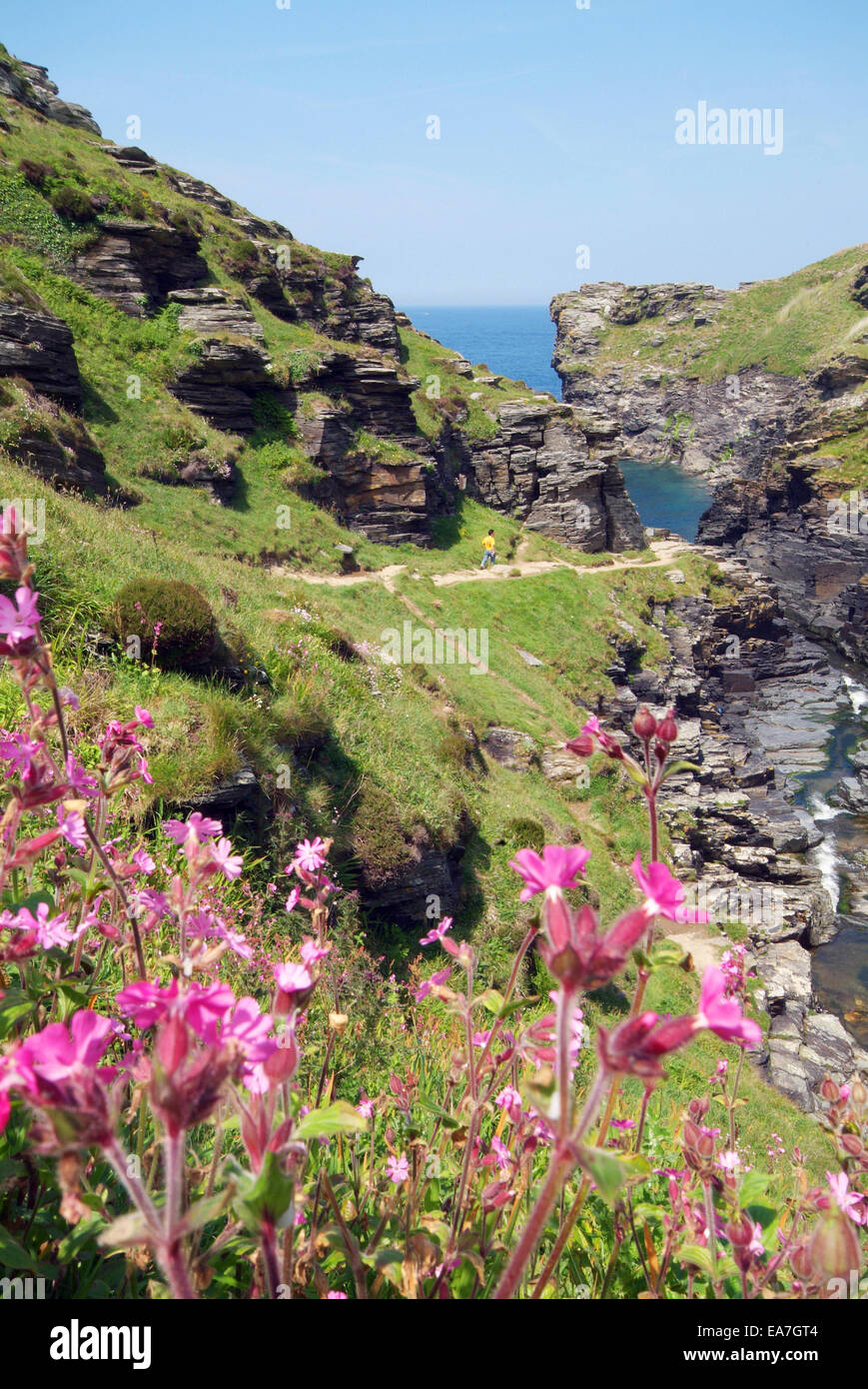 Rocky Valley on the coast between Tintagel & Boscastle North Cornwall South West England UK - Stock Image