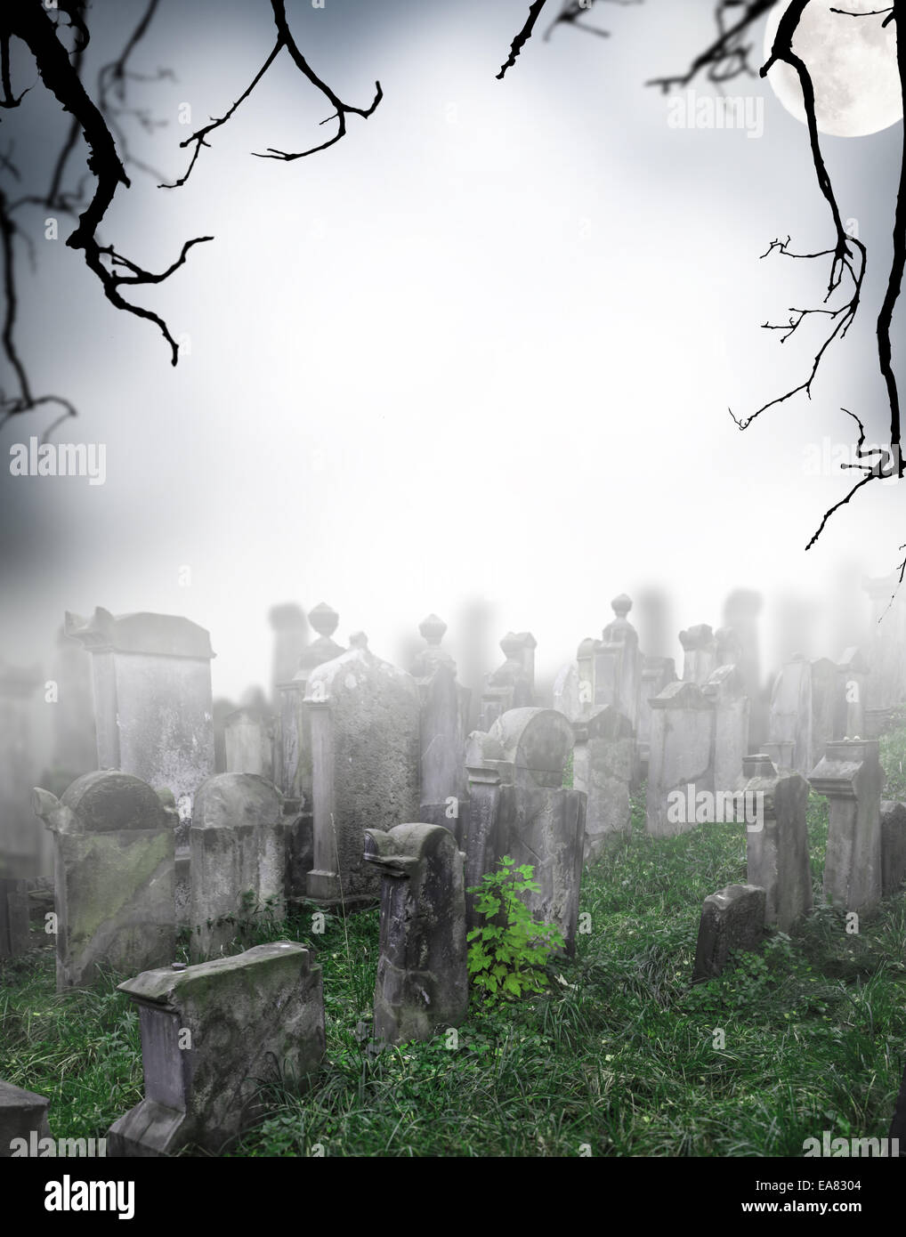 spooky halloween cemetery with graves stock photo: 75166004 - alamy