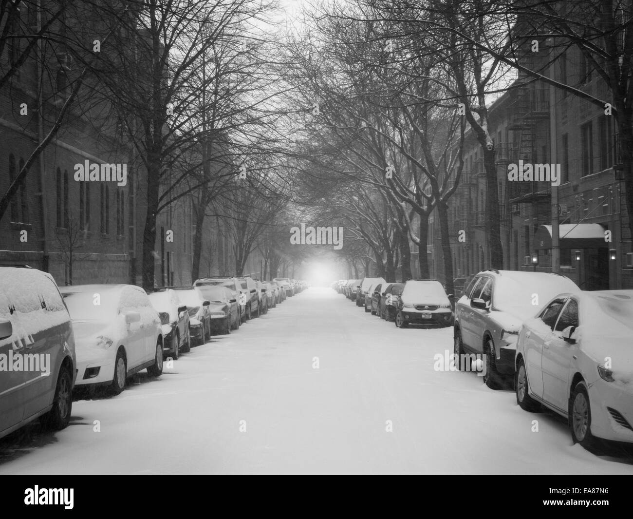 Brooklyn Street view in snowstorm. - Stock Image