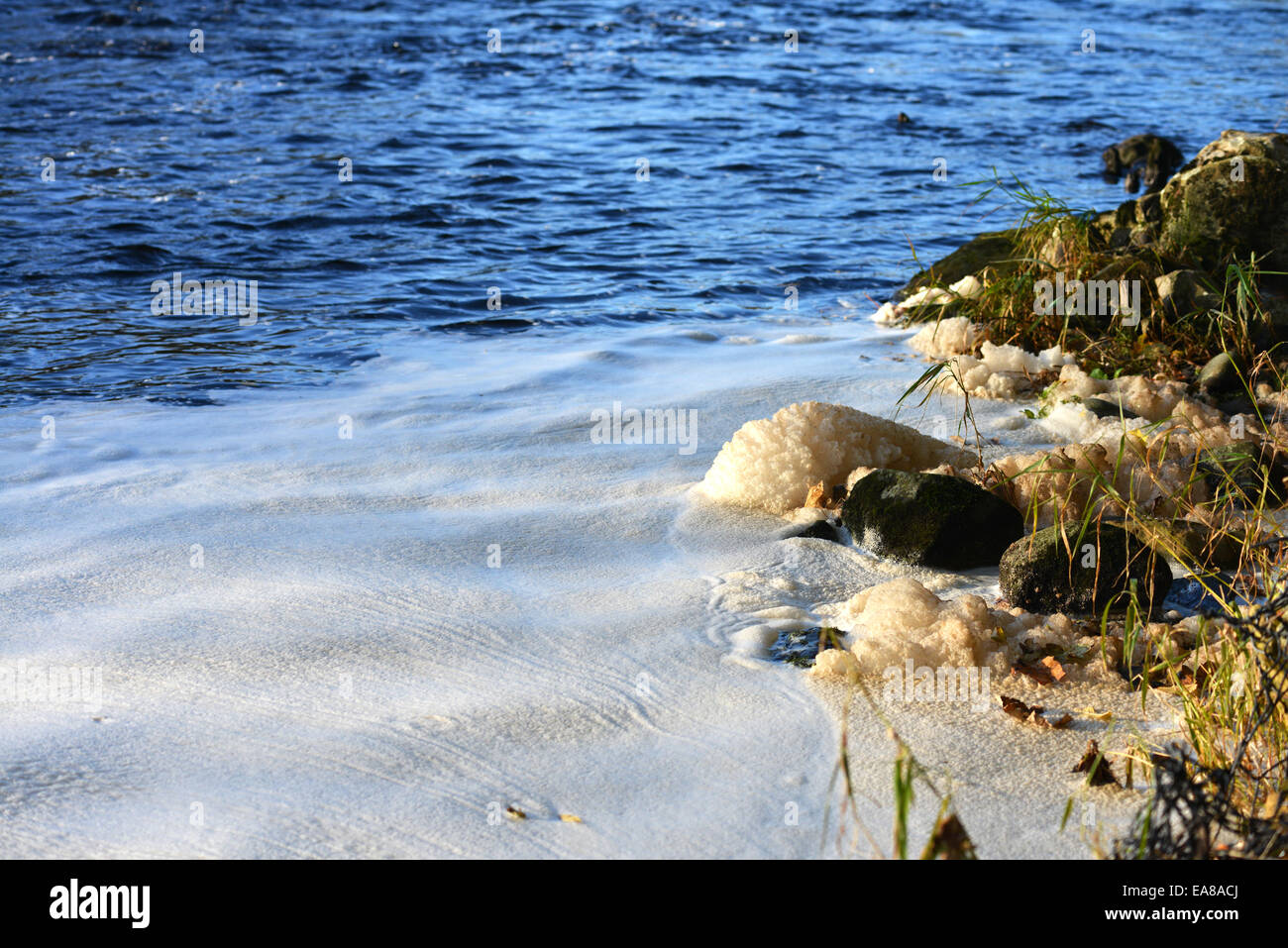 Foam on a river in Autumn. UK - Stock Image