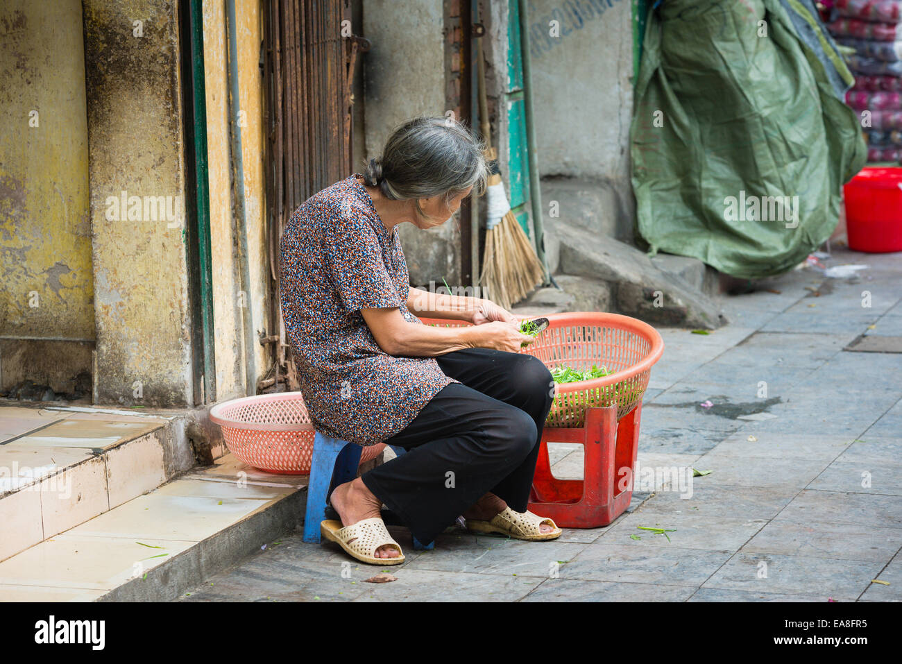 Elderly Vietnamese woman preparing vegetables at Dong Xuan Market in Hanoi's Old Quarter - Stock Image