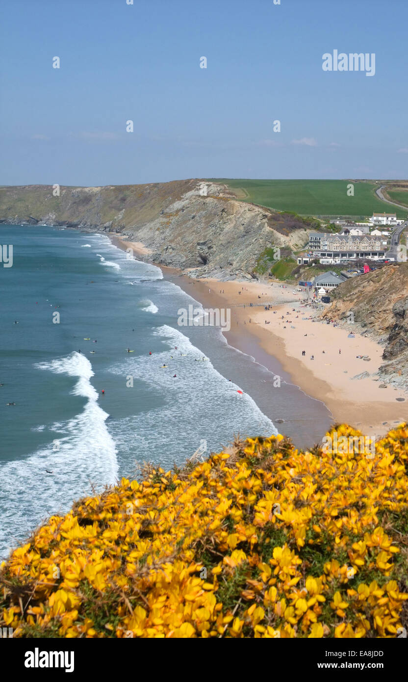 View from clifftop by yellow flowering gorse looking down at beach with peaple on sand & in sea surfing Watergate Stock Photo