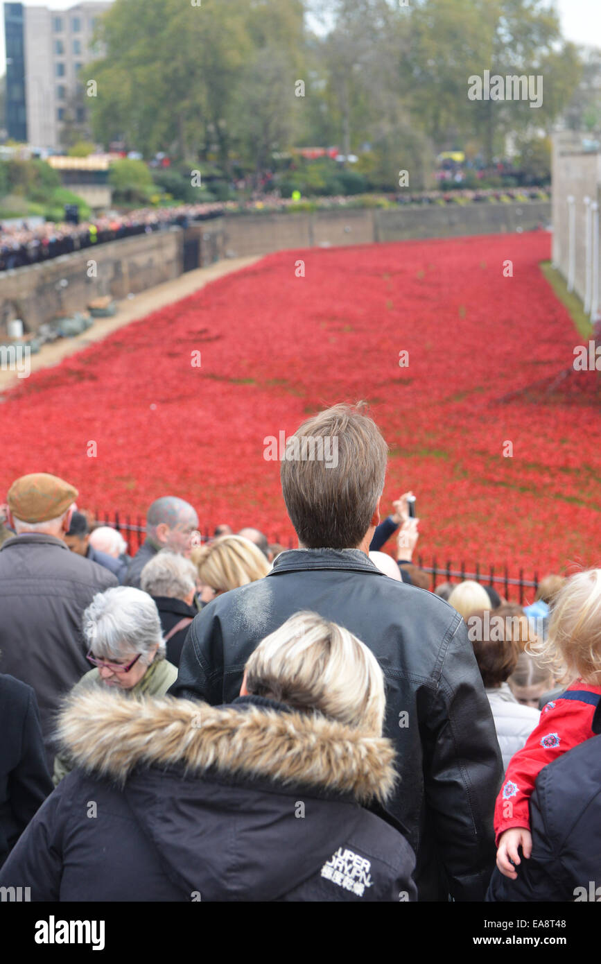 Tower of London, London, UK. 9th November 2014. The crowds fill the area around the Tower of London to look at the Stock Photo