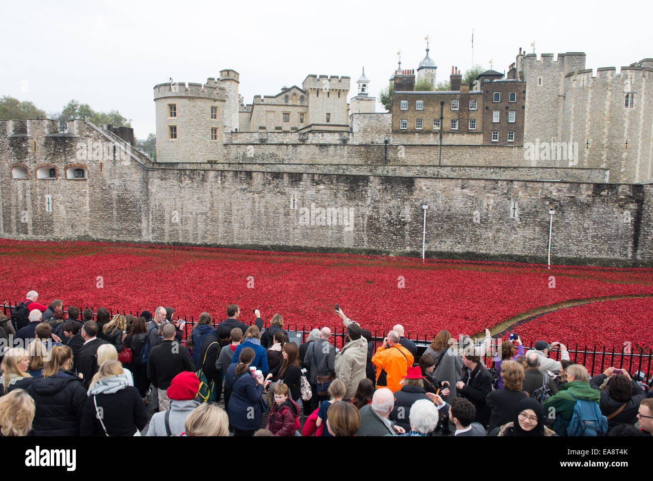 Tower of London, London, UK. 9th November 2014. The crowds fill the area around the Tower of London to look at the - Stock Image